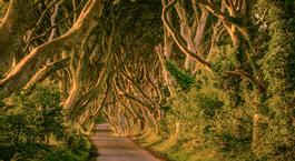 Busca un Viaje Chollo en Irlanda: Ruta de Juego de Tronos por la Isla Esmeralda