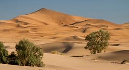 Busca Chollo Vacaciones en Marruecos: Marrakech y Desierto
