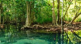 Busca un Viaje Chollo en Tailandia: Bangkok, Chiang Rai, Chiang Mai y Krabi