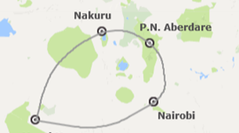 Chollos viajes ultimo minuto a Kenia: Safari en Kenia con Parque Aberdare
