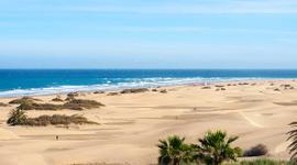 Busca Chollo Vacaciones en Gran Canaria