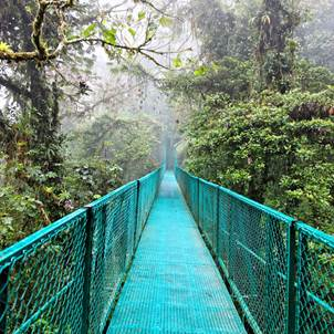 Costa Rica: Tortuguero, Caribe, Arenal, Monteverde y Manuel Antonio