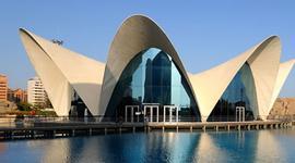 Busco un viaje chollo en Valencia