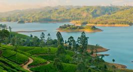 Sri Lanka: De Colombo a Sigiriya con Yala, Nuwara Eliya y Maldivas