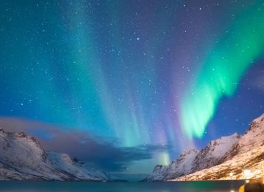 Viajes Noruega 2019: Vesterålen, Lofoten y Tromsø