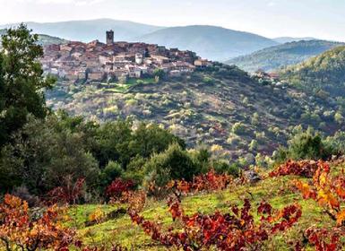 Viajes Castilla León 2019-2020: Ruta del Vino Sierra de Francia y ciudades Patrimonio Mundial