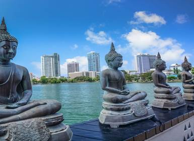 Viajes Sri Lanka 2019-2020: De Colombo a Galle con Yala y Sigiriya