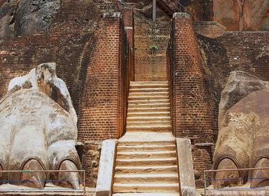 Viajes Sri Lanka 2019: De Colombo a Sigiriya con Yala y Nuwara Eliya