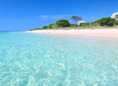 Viajes Indonesia 2019-2020: Isla de Bali, Papúa y Raja Ampat