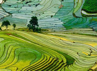 Viajes Vietnam 2019: Vietnam Sur a Norte y Sapa