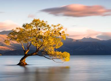 Viajes Nueva Zelanda y Australia 2019: Australia y Nueva Zelanda