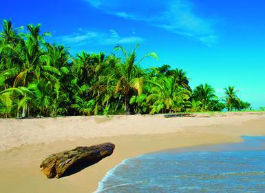 Viajes Costa Rica y Cuba 2019-2020: Tortuguero, Arenal, Monteverde, la Habana y Varadero