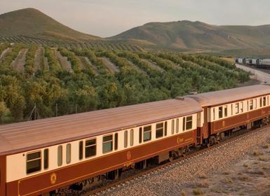 Viajes Andalucía 2018-2019: Tren Al Andalus de Sevilla a Sevilla