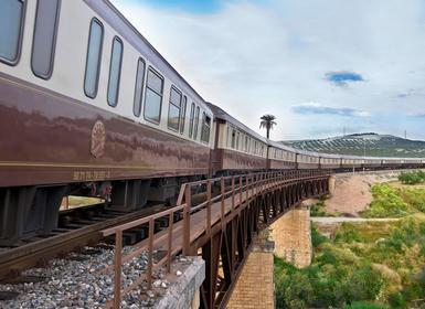 Viajes Madrid, Extremadura y Andalucía 2018-2019: Tren Al Andalus de Sevilla a Madrid