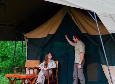 Viajes Kenia 2019-2020: Escapada a Safari Kenia Esencial