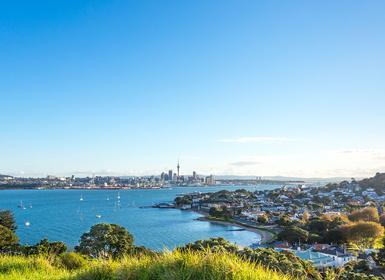 Viajes Fiji y Nueva Zelanda 2018-2019: Nueva Zelanda Isla Norte y Fiji