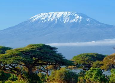 Viajes Islas del Índico y Kenia 2019: Masai Mara, Naivasha y Amboseli Sopa Lodges y Zanzíbar