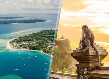 Viajes Indonesia 2019-2020: Bali e Islas Gili