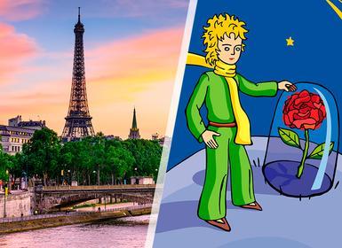 Viajes Francia 2019-2020: Combinado París y el Parque del Principito en tren
