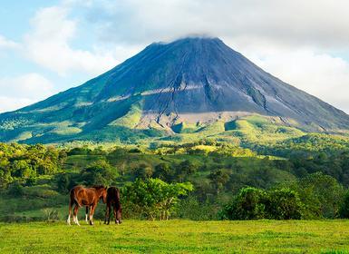 Viajes Costa Rica 2019-2020: San José, Puerto Viejo, Tortuguero, Arenal, Monteverde y Santa Teresa
