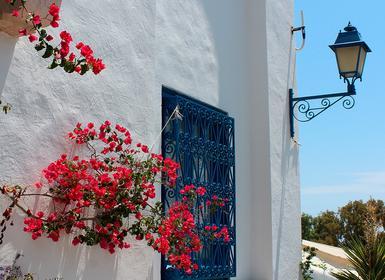 Viajes Túnez 2019: Viaje Túnez, Sidi Bou Said, Cartago, Kairouan, Tozeur, Douz y Sousse