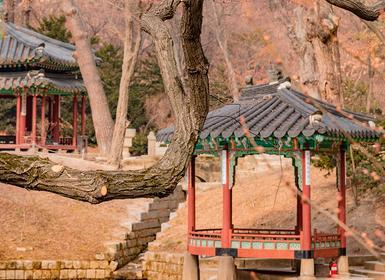 Viajes Corea Del Sur, China y Japón 2019-2020: Viaje organizado De Seúl a Pekín con Hiroshima, Miyajima y Xian