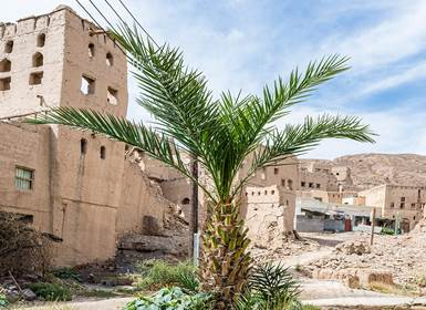 Viajes Omán y Emiratos Árabes 2019: Omán, Dubái y Abu Dhabi