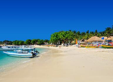 Viajes Indonesia 2019-2020: Vacaciones por  Lovina, Ubud, Jivva y Playas de Bali