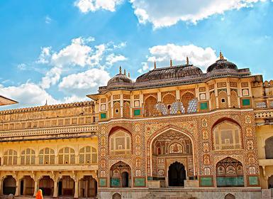 Viajes India 2019: Triángulo Dorado y Ranthambore