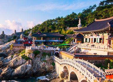 Viajes Corea Del Sur 2019: Seul, Jeju Island y Busan
