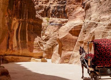 Viajes Jordania 2019: Amán, Petra y Wadi Rum