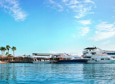 Viajes Egipto 2019: Tour Hurghada y Crucero 7 noches