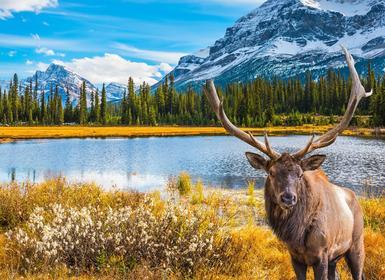 Viajes Canadá 2019-2020: De Este a Oeste