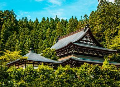 Viajes Japón 2019-2020: Viaje Tokio, Osaka, Kioto y Takayama
