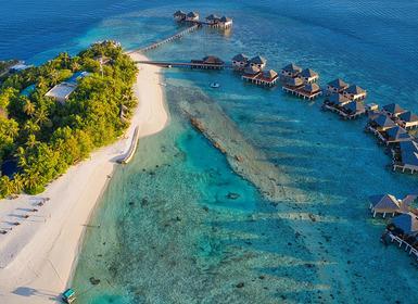 Viajes Maldivas, Islas del Índico y China 2019-2020: Vacaciones por  Pekín, Xian y Shanghái con Maldivas