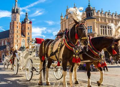 Viajes Austria, Polonia, República Checa, Centroeuropa, Eslovaquia y Centroeuropa 2019-2020: Praga, Viena, Cracovia y Varsovia